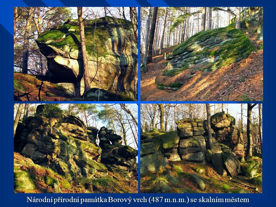 Národní přírodní památka Borový vrch (487 m.n.m.) se skalním městem