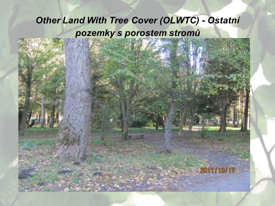 Other Land With Tree Cover (OLWTC) - Ostatní pozemky s porostem stromů