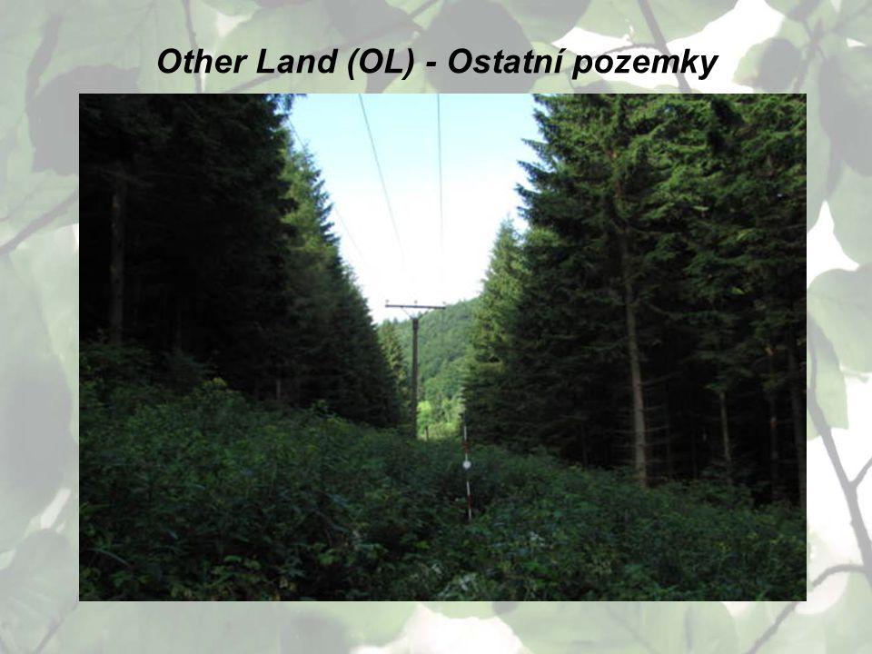 Other Land (OL) - Ostatní pozemky