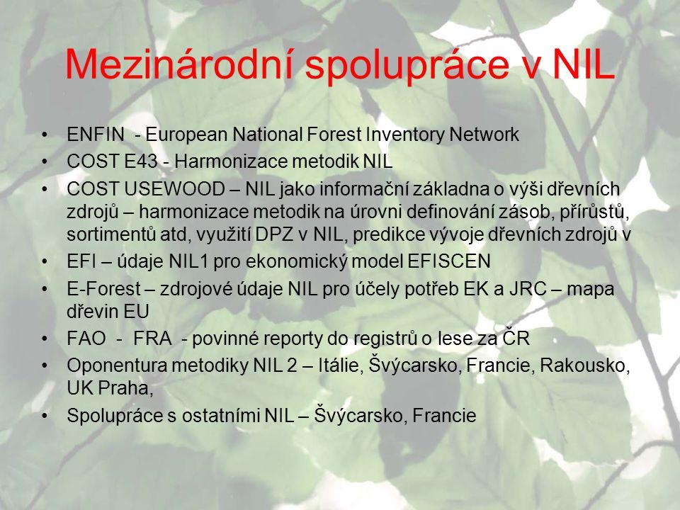Mezinárodní spolupráce v NIL