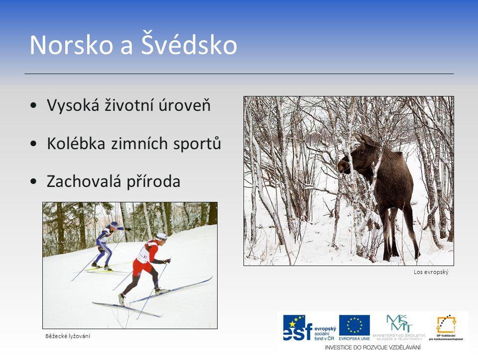 Norsko a Švédsko Vysoká životní úroveň Kolébka zimních sportů