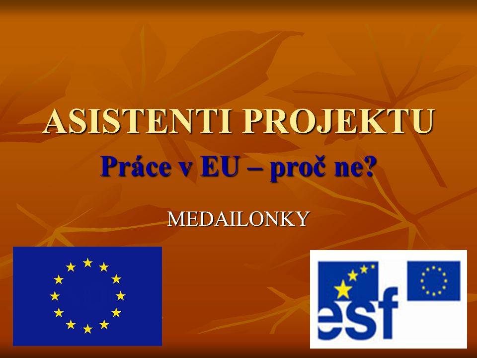 ASISTENTI PROJEKTU Práce v EU – proč ne