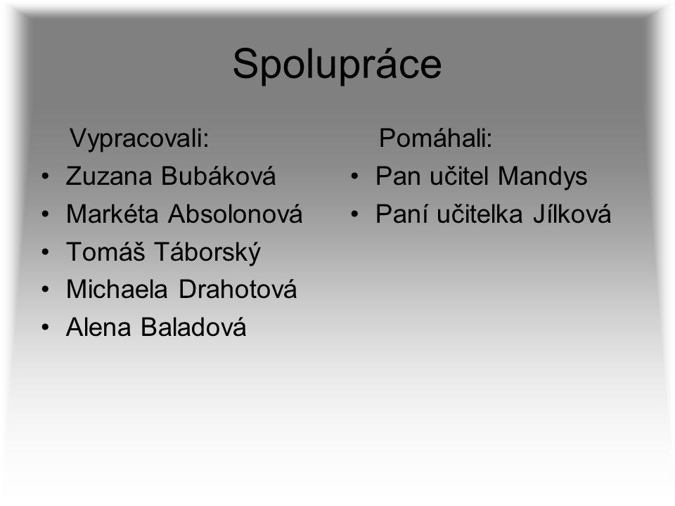 Spolupráce Vypracovali: Zuzana Bubáková Markéta Absolonová