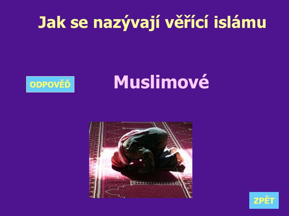 Jak se nazývají věřící islámu