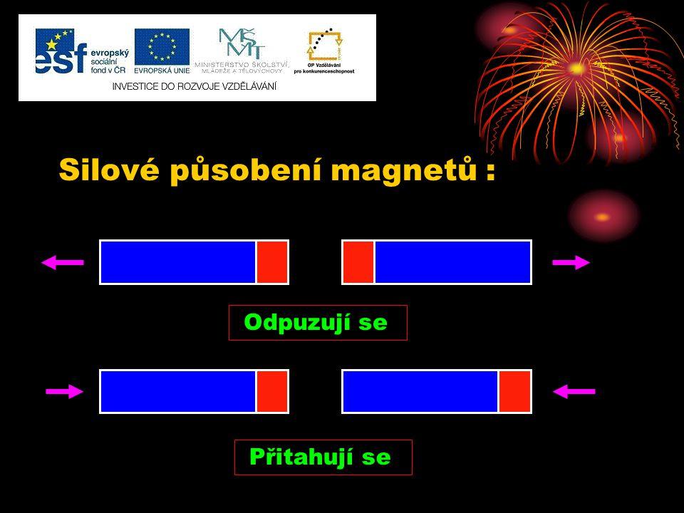 Silové působení magnetů :