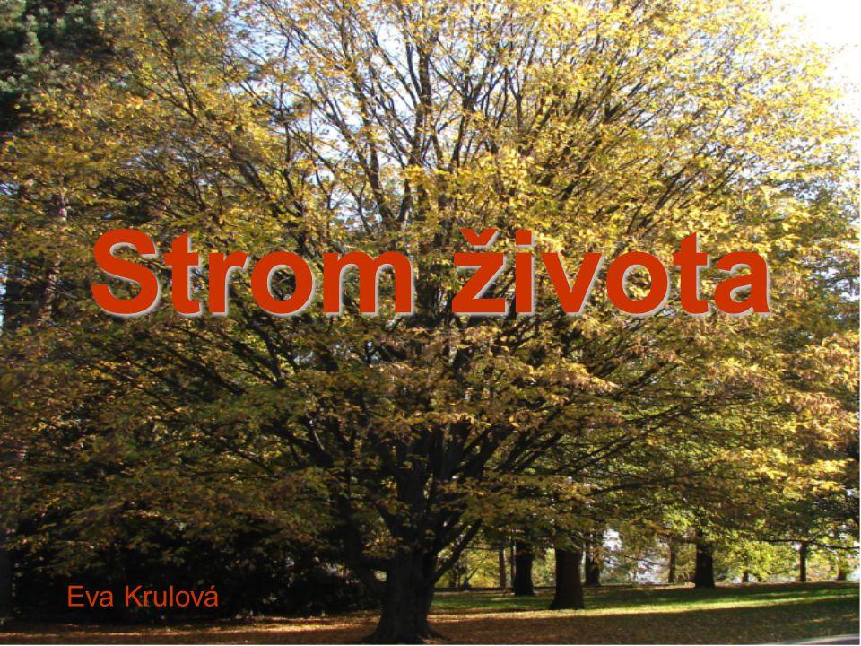 Strom života Eva Krulová