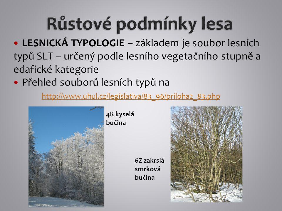 Růstové podmínky lesa LESNICKÁ TYPOLOGIE – základem je soubor lesních typů SLT – určený podle lesního vegetačního stupně a edafické kategorie.