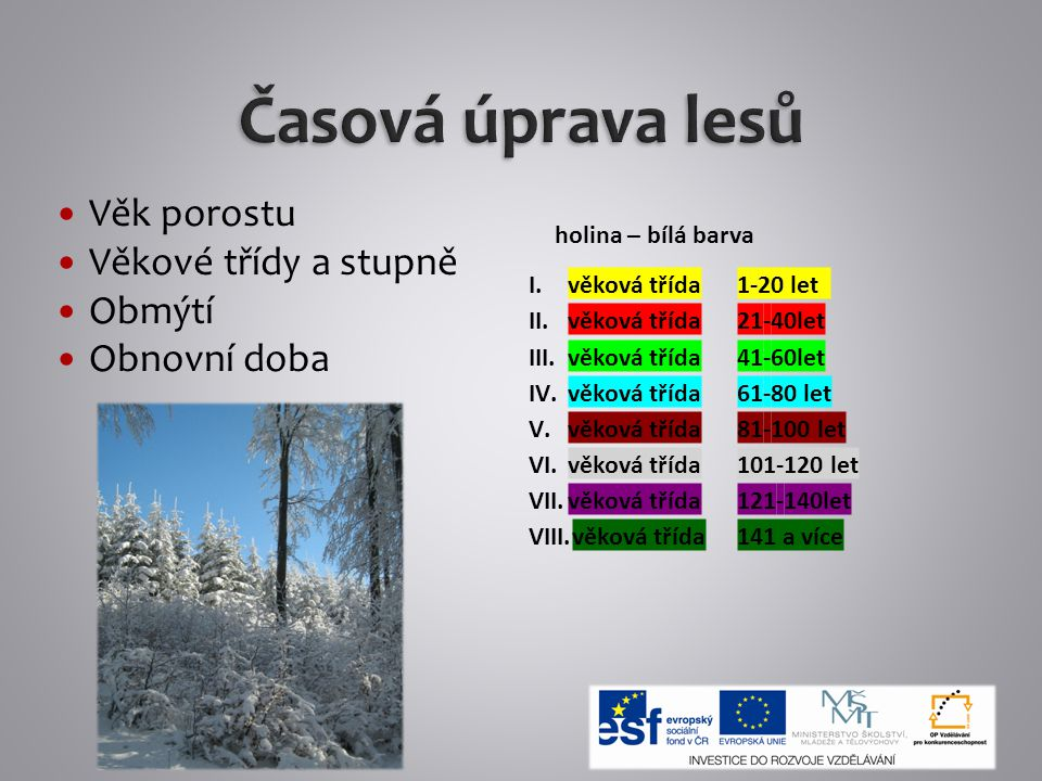 Časová úprava lesů Věk porostu Věkové třídy a stupně Obmýtí