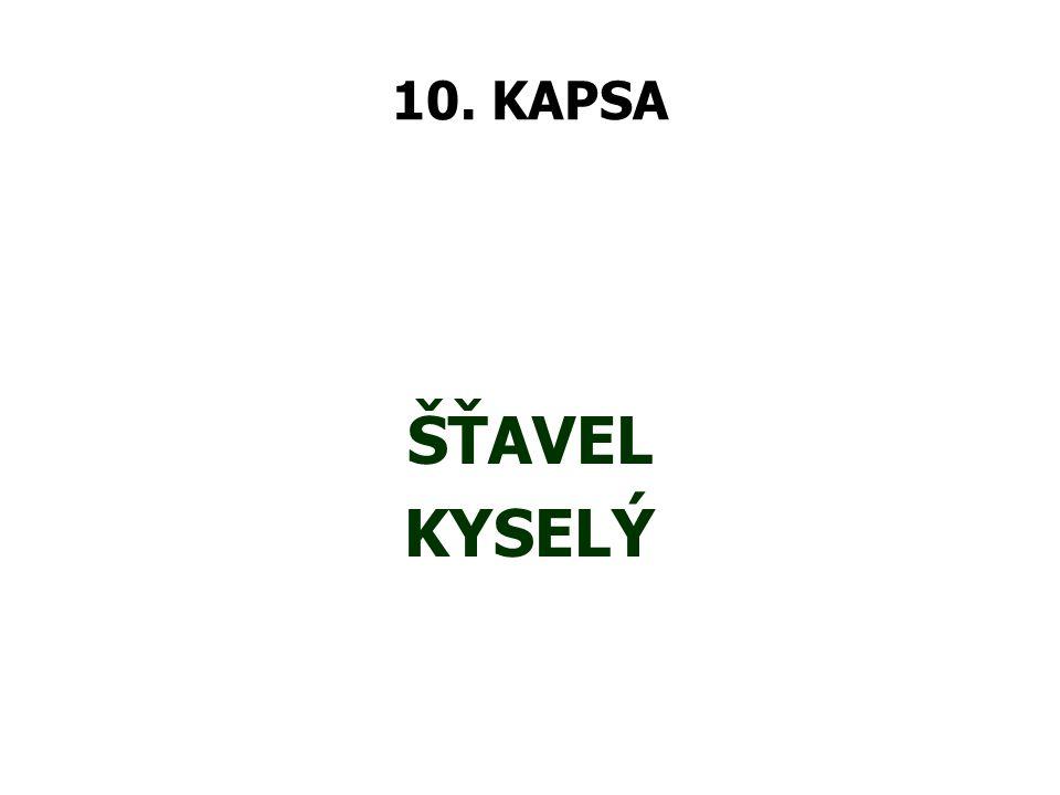 10. KAPSA ŠŤAVEL KYSELÝ