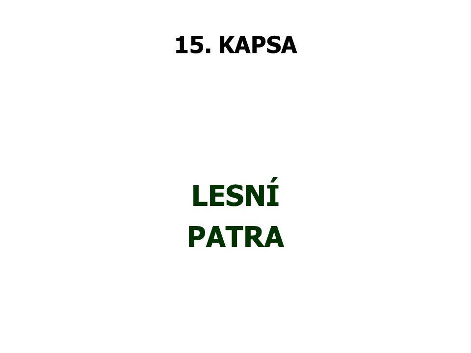 15. KAPSA LESNÍ PATRA