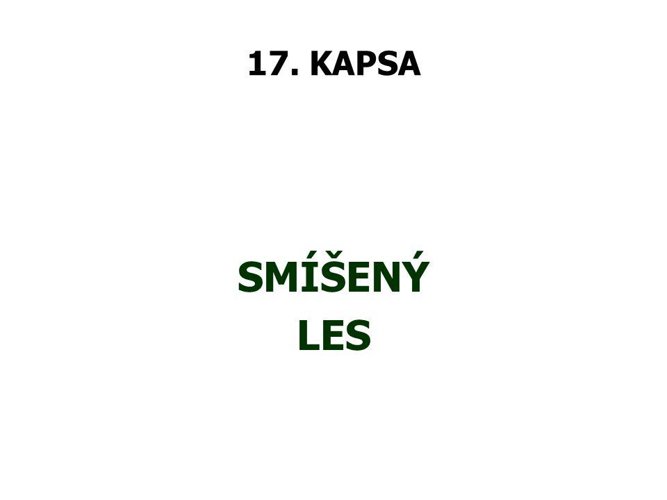 17. KAPSA SMÍŠENÝ LES