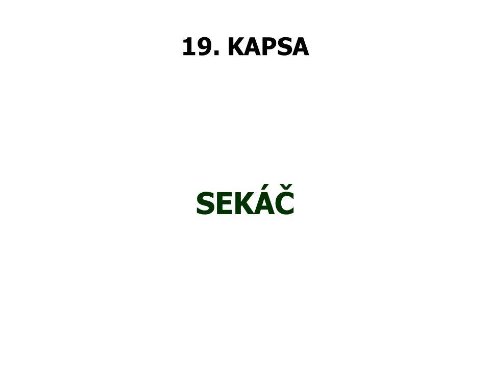 19. KAPSA SEKÁČ