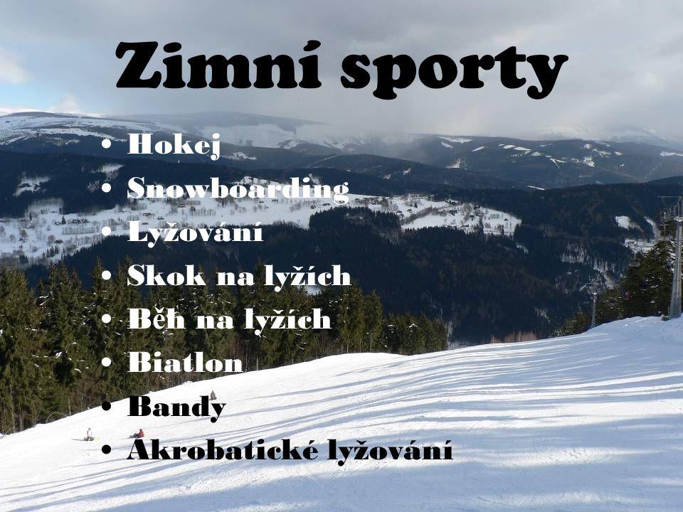 Zimní sporty Hokej Snowboarding Lyžování Skok na lyžích Běh na lyžích