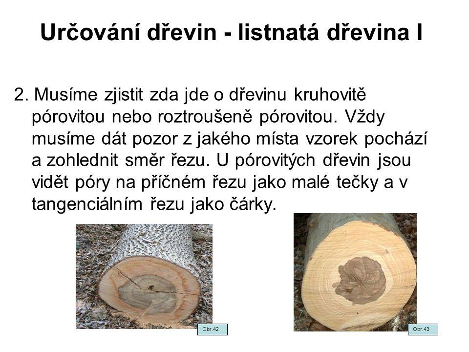 Určování dřevin - listnatá dřevina I