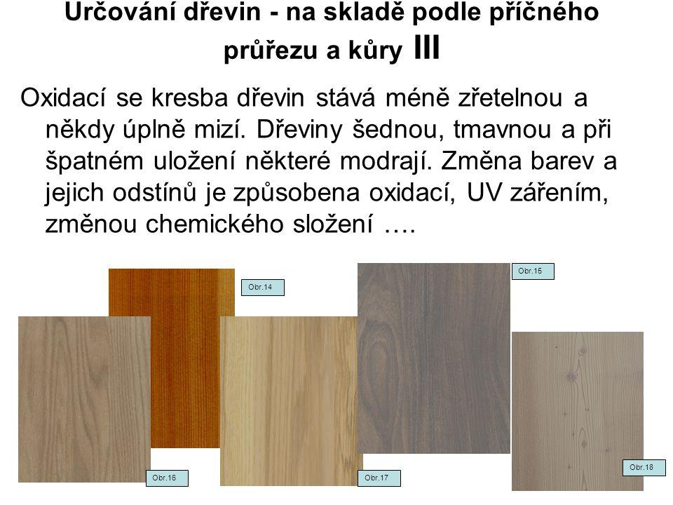 Určování dřevin - na skladě podle příčného průřezu a kůry III