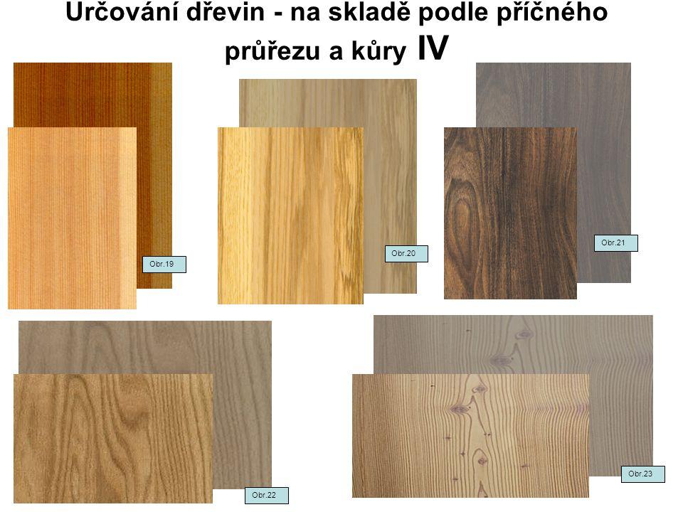 Určování dřevin - na skladě podle příčného průřezu a kůry IV