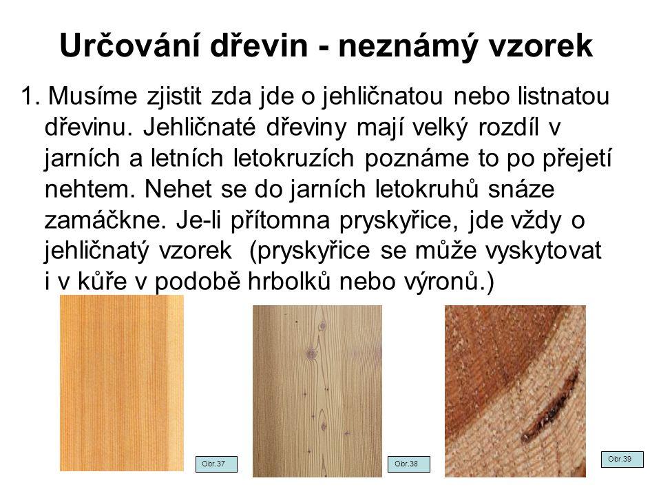 Určování dřevin - neznámý vzorek