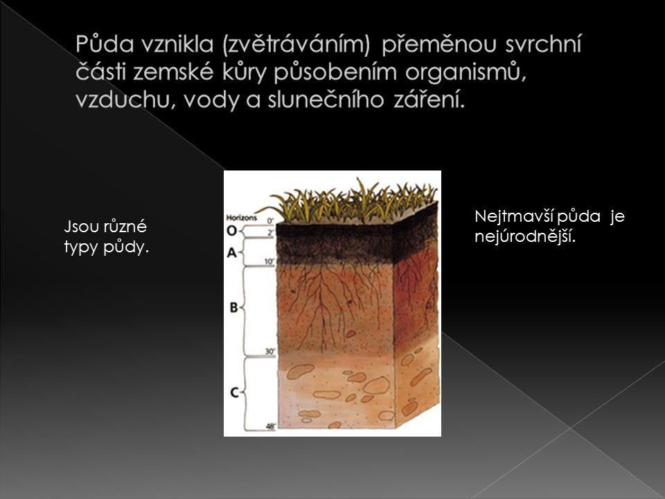 Půda vznikla (zvětráváním) přeměnou svrchní části zemské kůry působením organismů, vzduchu, vody a slunečního záření.