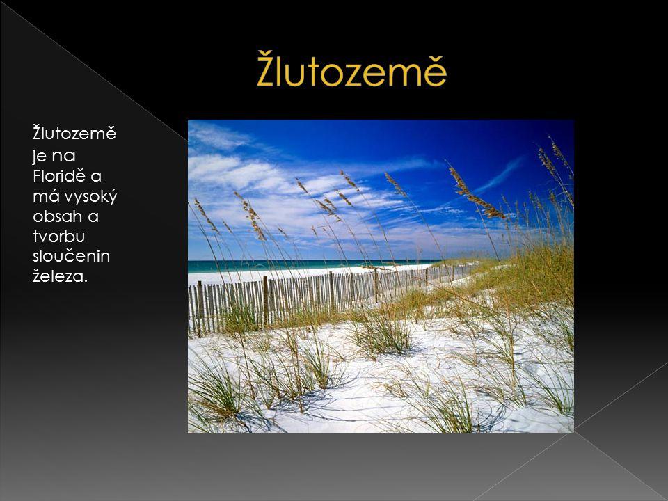 Žlutozemě Žlutozemě je na Floridě a má vysoký obsah a tvorbu