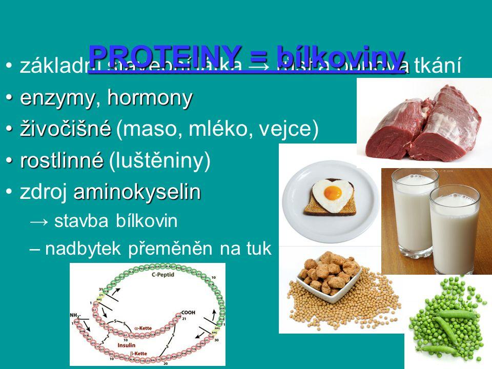 PROTEINY = bílkoviny základní stavební látka → růst a obnova tkání