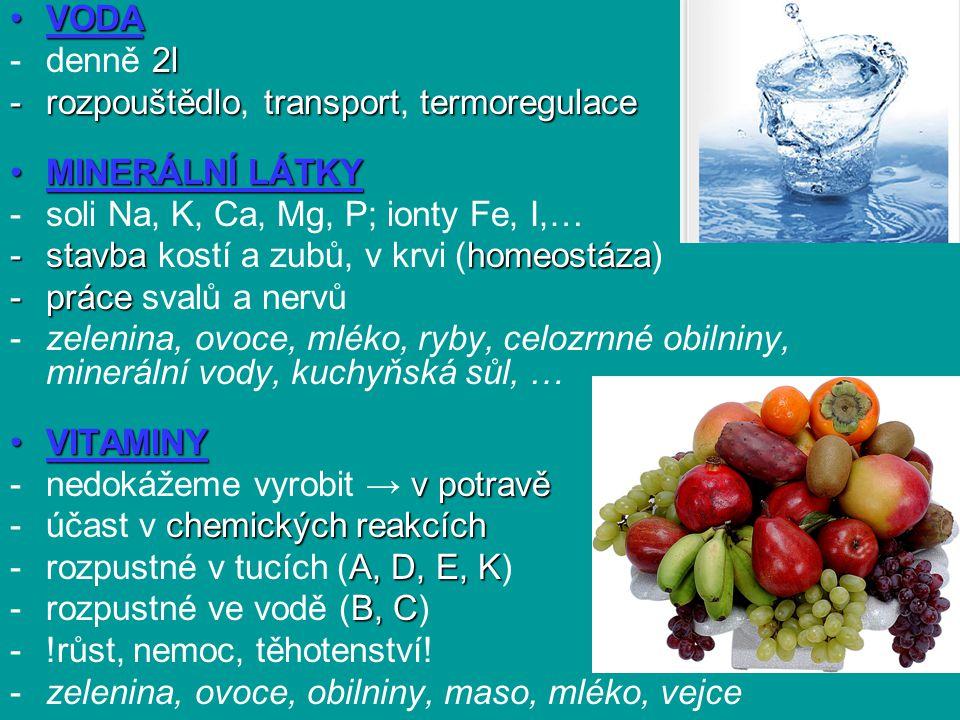 VODA denně 2l. rozpouštědlo, transport, termoregulace. MINERÁLNÍ LÁTKY. soli Na, K, Ca, Mg, P; ionty Fe, I,…