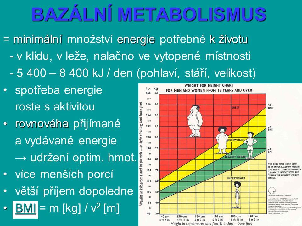 BAZÁLNÍ METABOLISMUS = minimální množství energie potřebné k životu