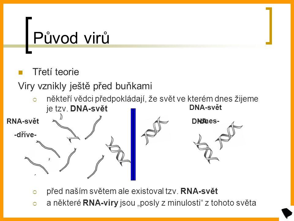 Původ virů Třetí teorie Viry vznikly ještě před buňkami