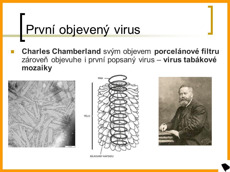 První objevený virus Charles Chamberland svým objevem porcelánové filtru zároveň objevuhe i první popsaný virus – virus tabákové mozaiky.