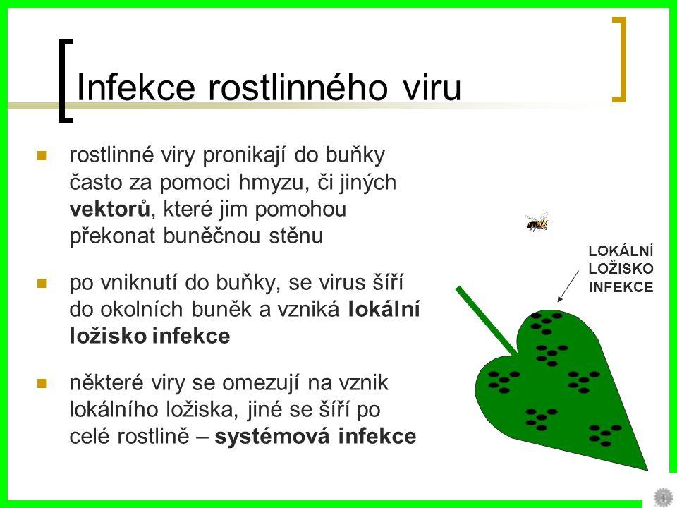 Infekce rostlinného viru