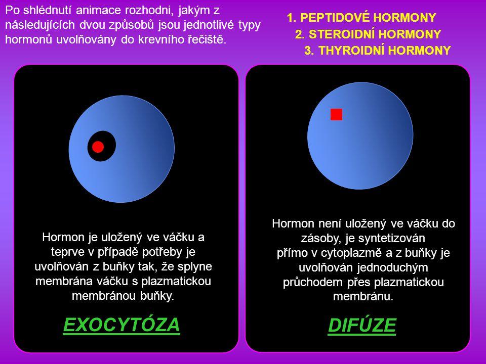 Po shlédnutí animace rozhodni, jakým z následujících dvou způsobů jsou jednotlivé typy hormonů uvolňovány do krevního řečiště.