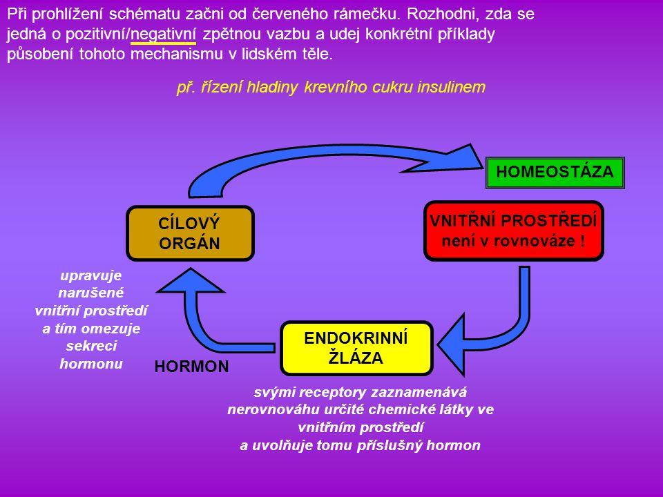 př. řízení hladiny krevního cukru insulinem