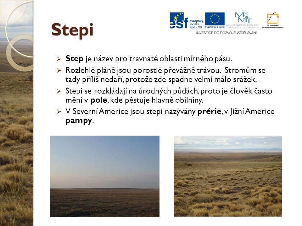 Stepi Step je název pro travnaté oblasti mírného pásu.