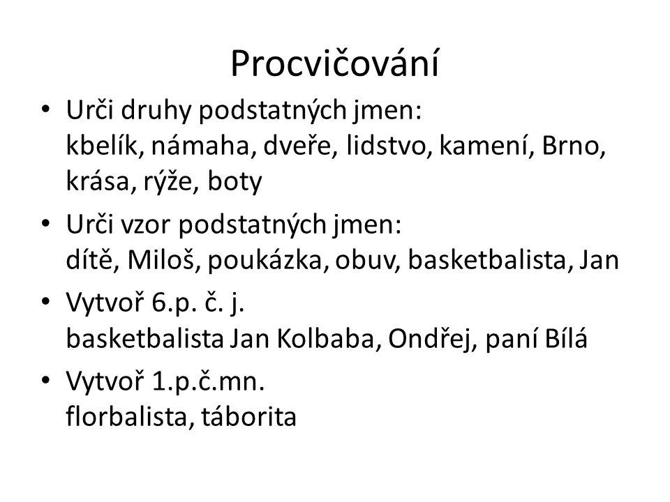 Procvičování Urči druhy podstatných jmen: kbelík, námaha, dveře, lidstvo, kamení, Brno, krása, rýže, boty.