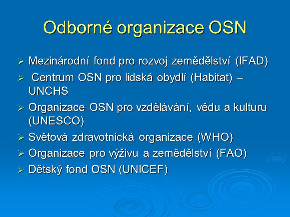 Odborné organizace OSN
