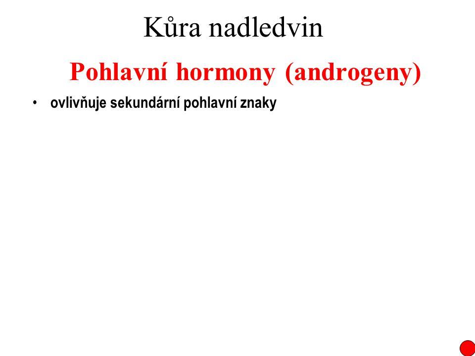 Pohlavní hormony (androgeny)