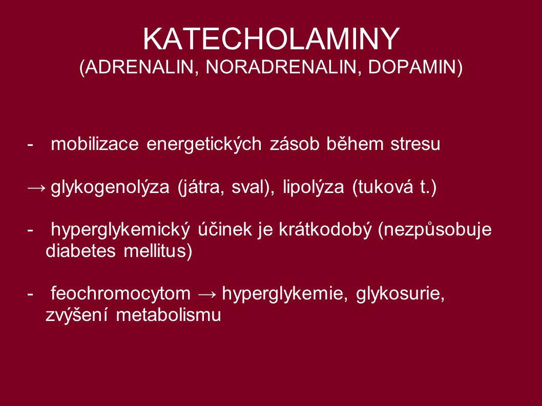 KATECHOLAMINY (ADRENALIN, NORADRENALIN, DOPAMIN)