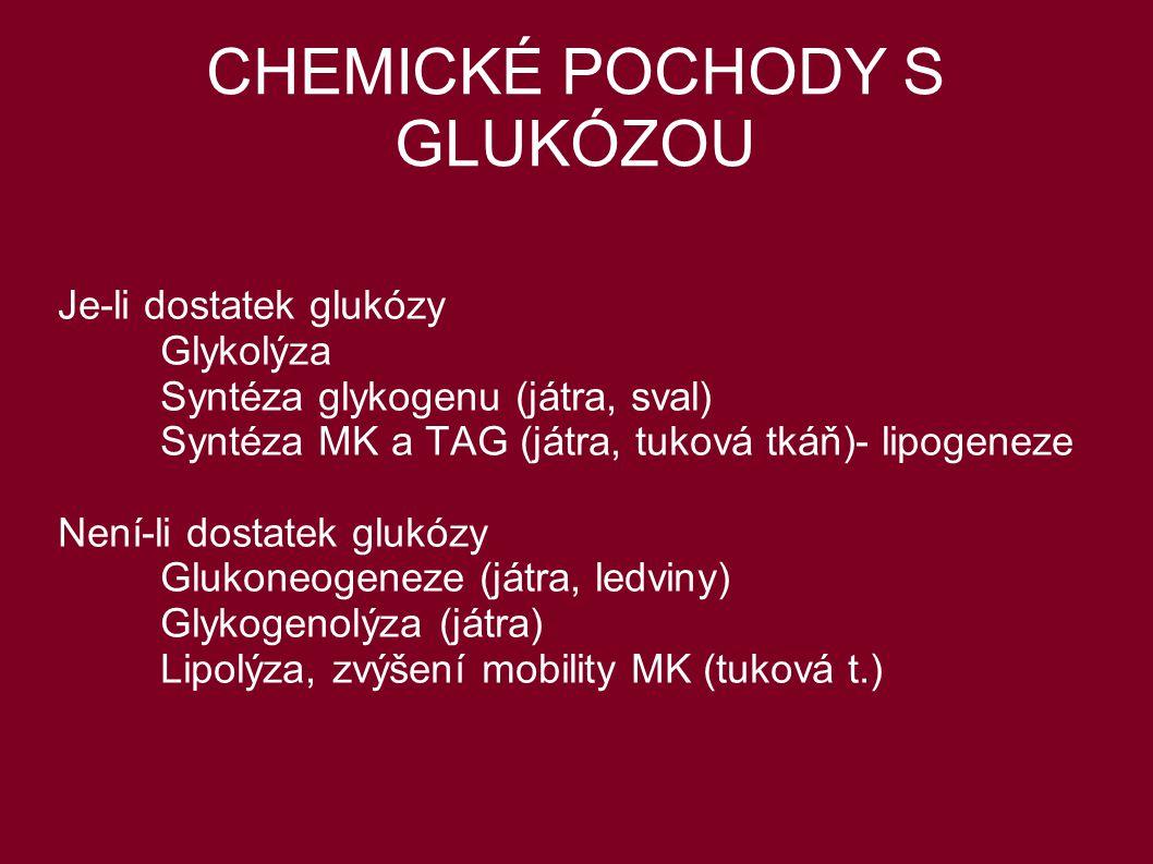 CHEMICKÉ POCHODY S GLUKÓZOU