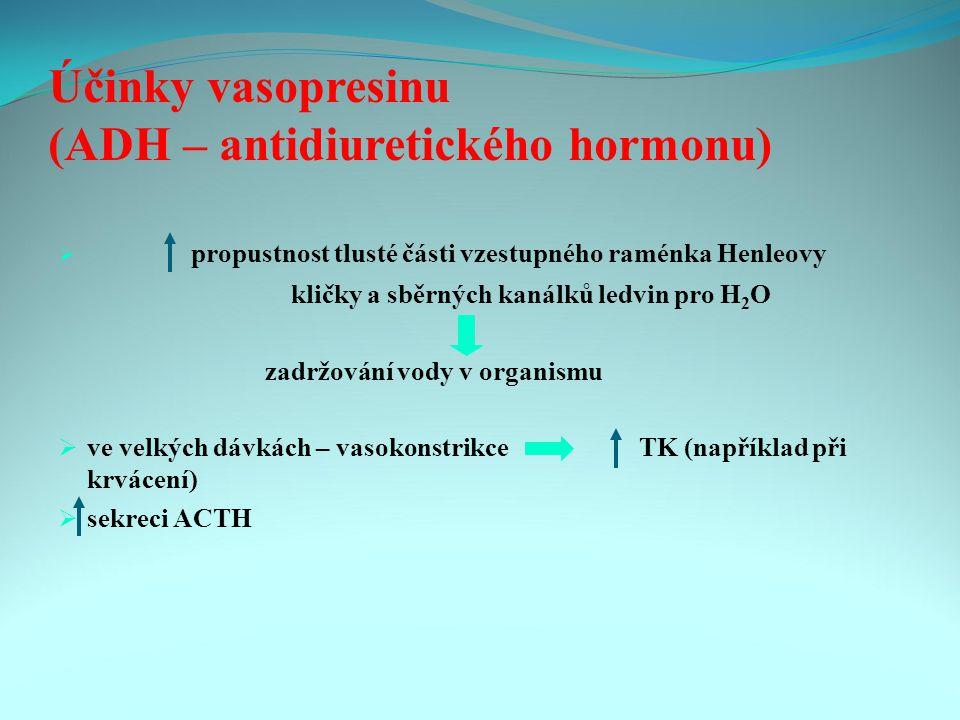 Účinky vasopresinu (ADH – antidiuretického hormonu)