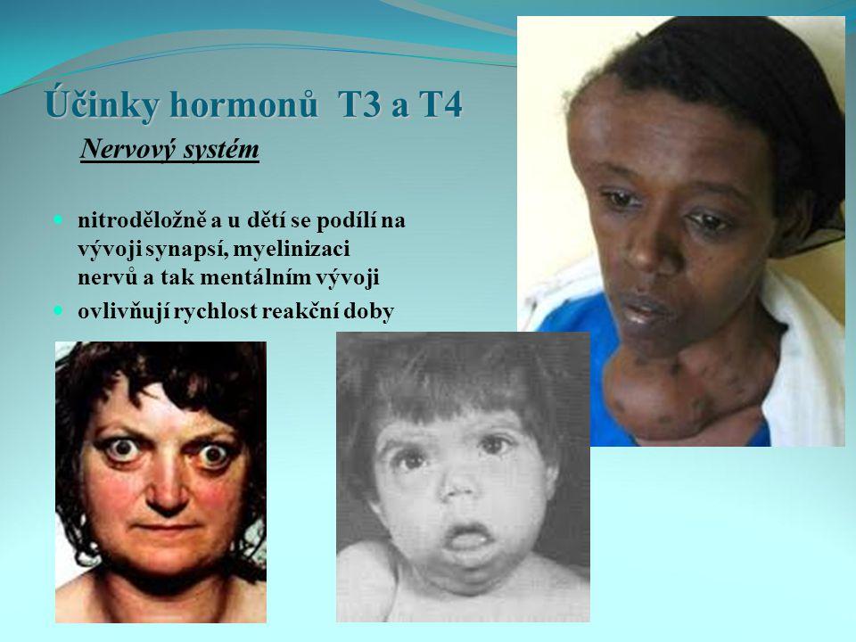 Účinky hormonů T3 a T4 Nervový systém