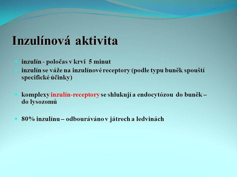 Inzulínová aktivita inzulín - poločas v krvi 5 minut