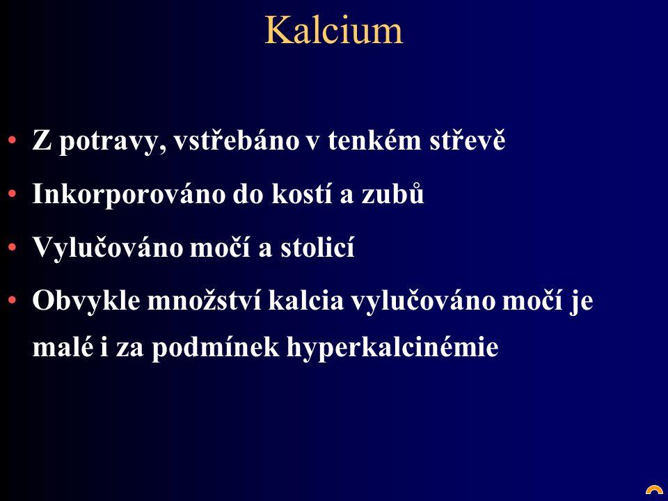 Kalcium Z potravy, vstřebáno v tenkém střevě