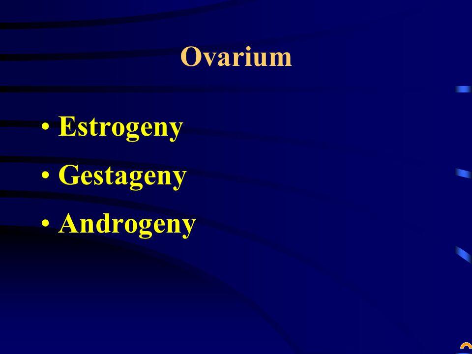 Ovarium Estrogeny Gestageny Androgeny