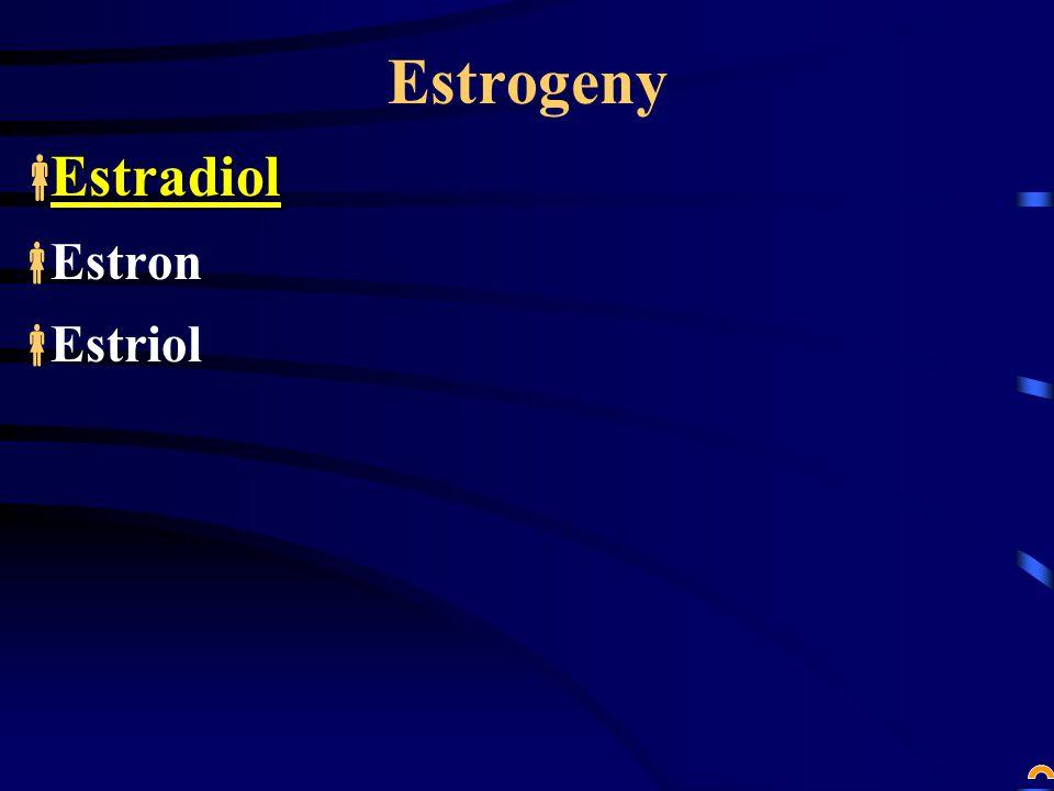 Estrogeny Estradiol Estron Estriol
