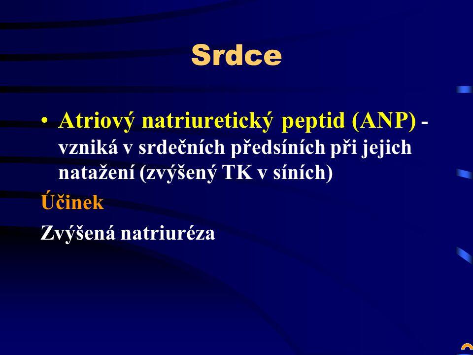 Srdce Atriový natriuretický peptid (ANP) - vzniká v srdečních předsíních při jejich natažení (zvýšený TK v síních)