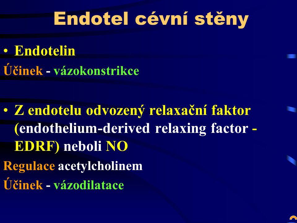 Endotel cévní stěny Endotelin