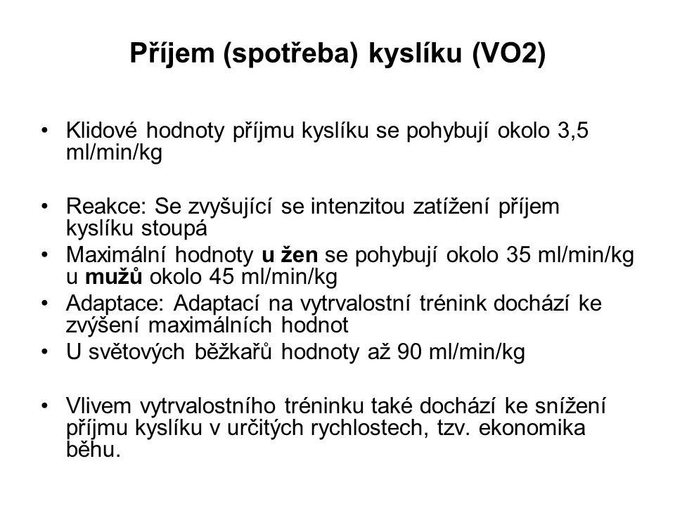 Příjem (spotřeba) kyslíku (VO2)