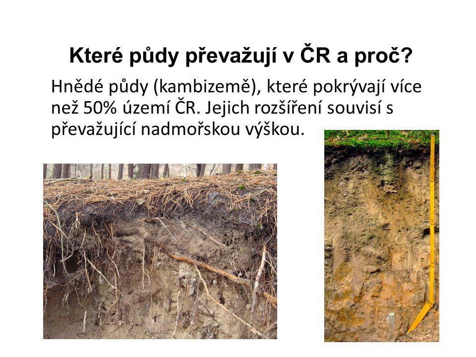 Které půdy převažují v ČR a proč