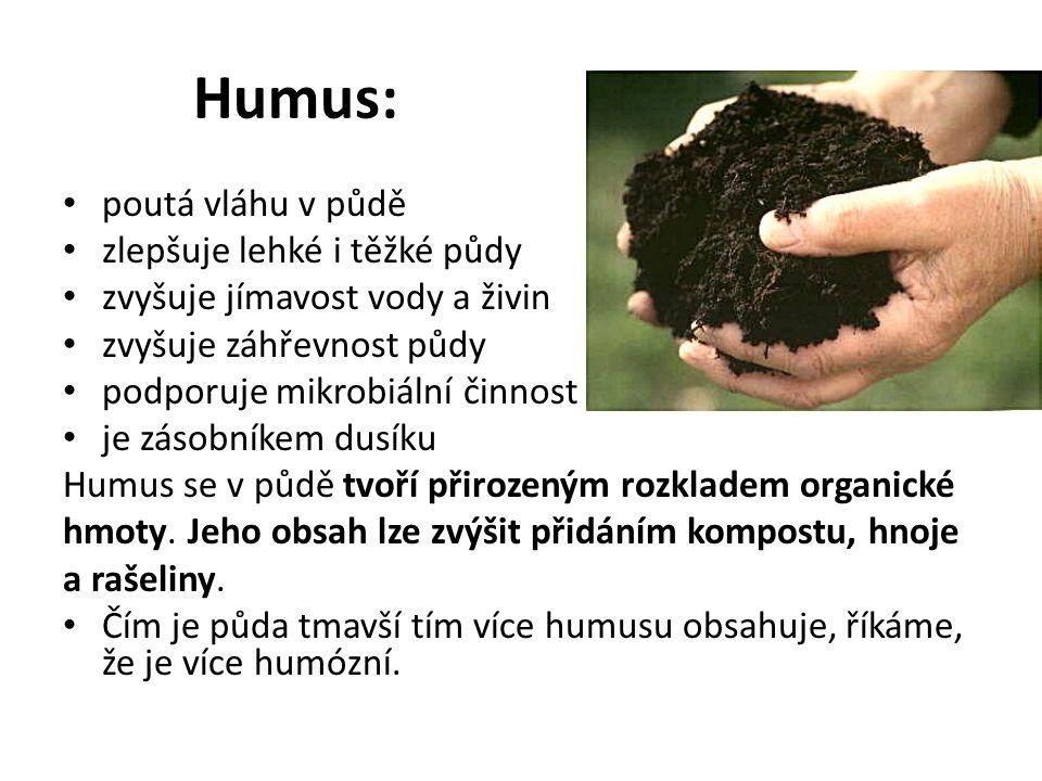 Humus: poutá vláhu v půdě zlepšuje lehké i těžké půdy