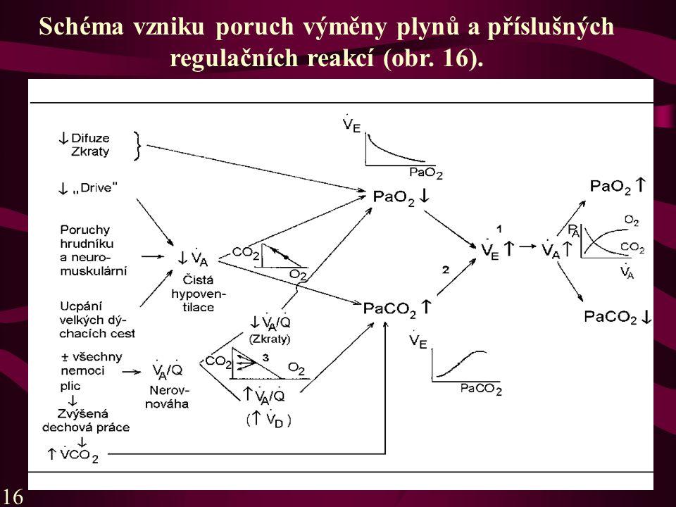 Schéma vzniku poruch výměny plynů a příslušných regulačních reakcí (obr. 16).