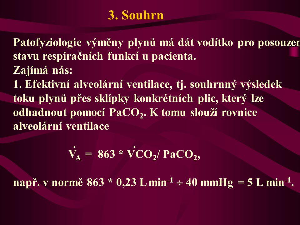 3. Souhrn Patofyziologie výměny plynů má dát vodítko pro posouzení stavu respiračních funkcí u pacienta.